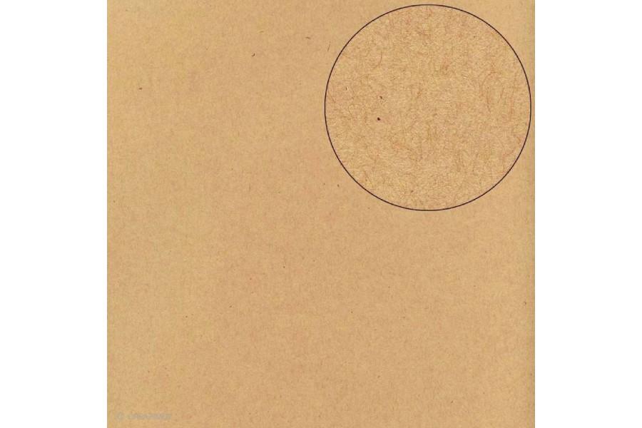 Papier Scrapbooking Bazzill kraft 30,5 x 30,5 cm 11110960 ARTEMIO